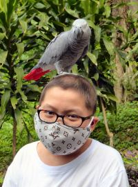 Zi Yuan at the KL Bird Park